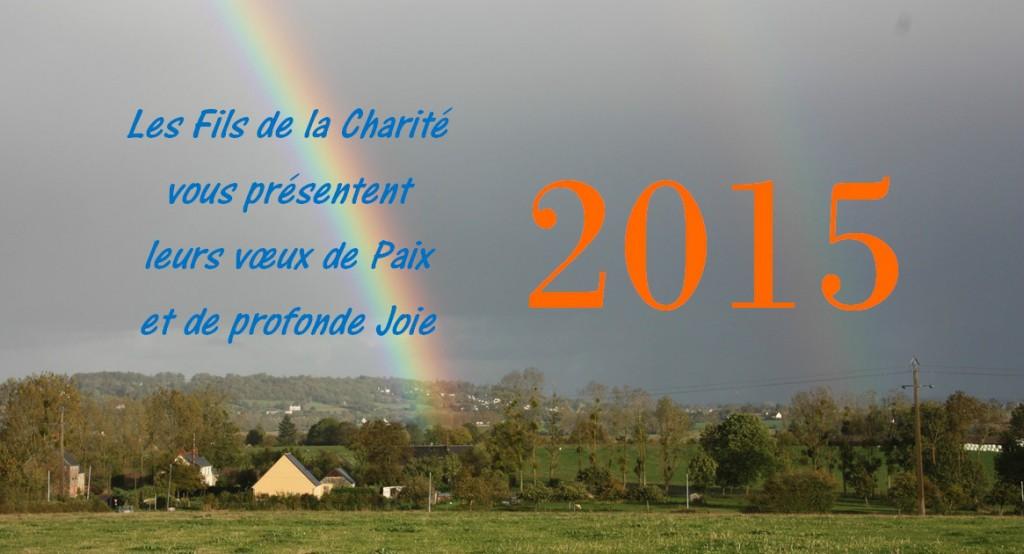 Voeux pour 2015