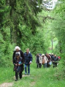 Marche en forêt lors de la retraite de la Fraternité à Benoite-Vaux du 14 au 17 mai 2015