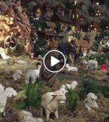 Résultats du concours de vidéos de crèches de Noël 2017 à l'Épiphanie 2018