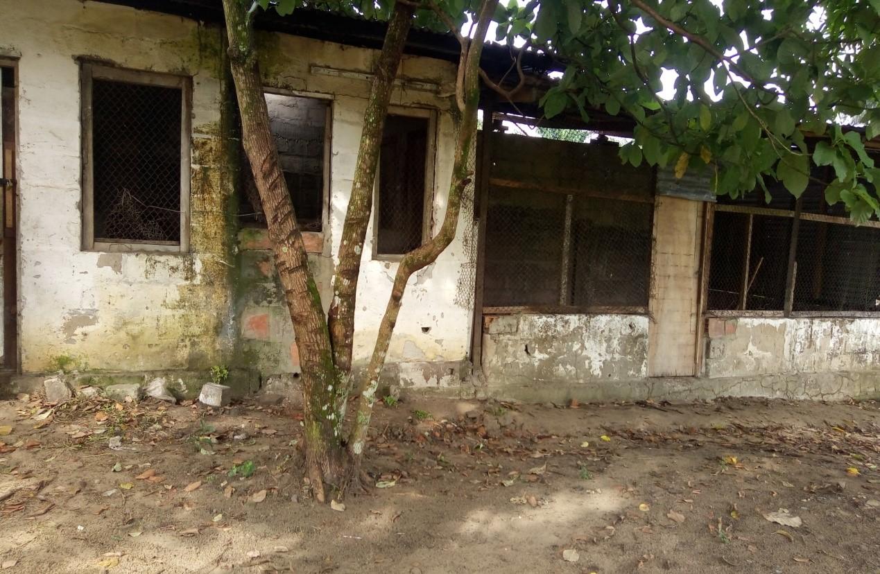 RDC : Forage d'eau potable à Idiofa