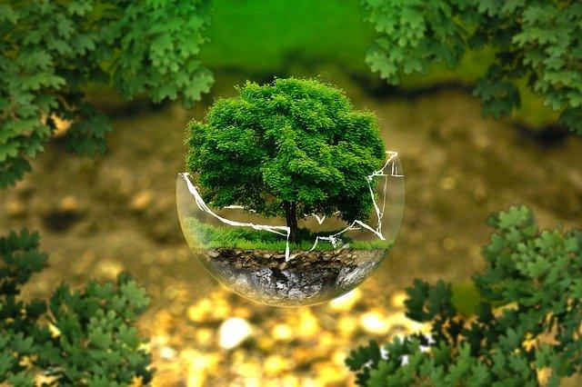 environmental-protection de ejaugsburg par Pixabay