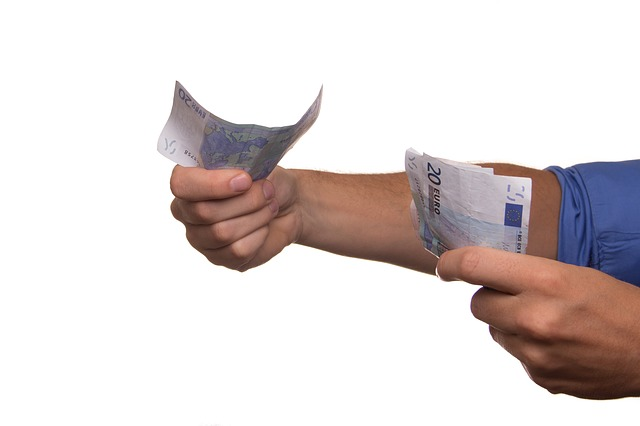 euro de niekverlaan par Pixabay